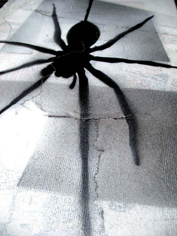 Mr Pilgrim Graffiti Art on Newspaper - Fear of Spiders | original art for sale, urban art, buy street art online