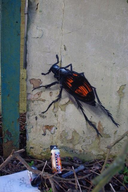 ROA, graffiti street art, urban art online, graffiti art, street artists, urban artists, graffiti artists, free walls