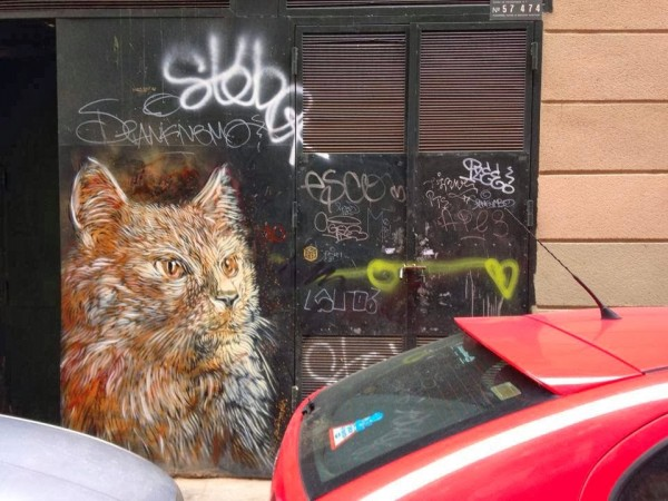 C215, Barcelona, Spain