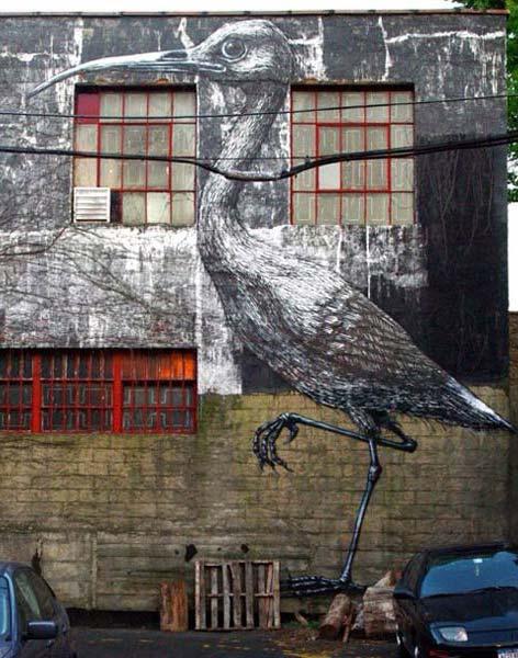 Belgian artist ROA | explore street art of the world