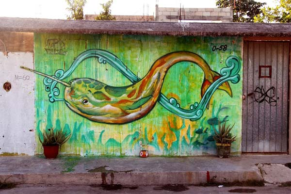 Street art in Cancun, Mexico by Farid Rueda | explore street art of the world