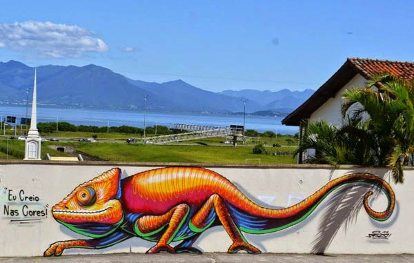 Street art in Brazil by Rizo (Photo by SABrazil)